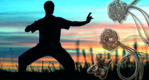 """""""Creare con le mani"""" e """"Movimento energetico"""": al via due nuovi corsi-laboratorio"""